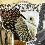 Ancient People Try Durian, the Zombie Apocalypse Inducing Fruit - Food Origins